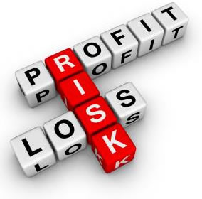 profit and risk involved online